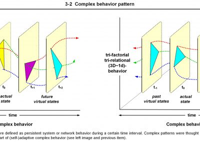 8C ICNP 3-2 WEB Complex Behavior Pattern JPEG
